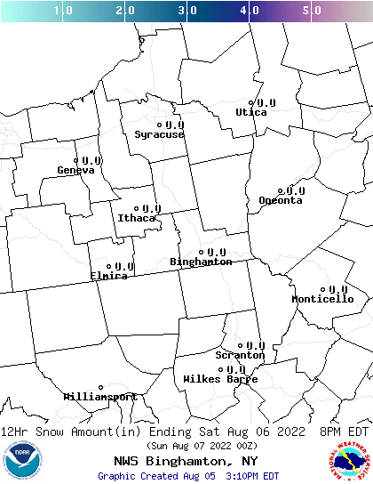 NWS BGM 24 Hour Snowfall Forecast Report