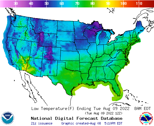 Day 1 US Low Temperature Forecast