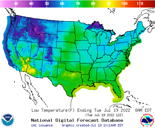 Daily Min Temp Forecast Tomorrow