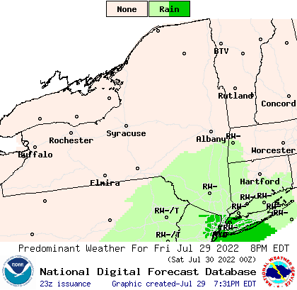 https://graphical.weather.gov/images/newyork/Wx1_newyork.png