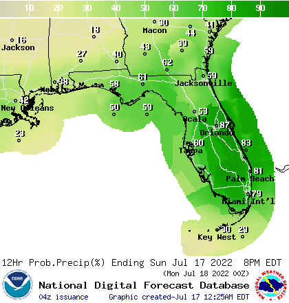 Florida Twelve Hour Precipitation Probabilities